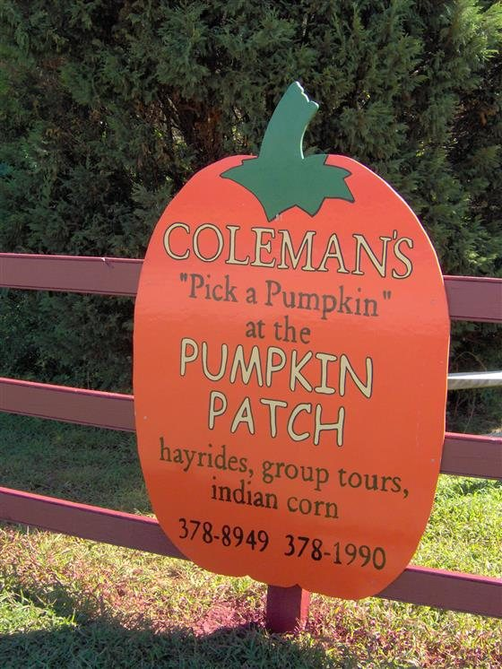 Coleman's Christmas Tree Farm Pumpkin Patch - Delaware Haunted Houses